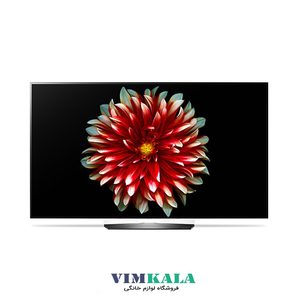 تلویزیون OLED ال جی مدل EG9A7V